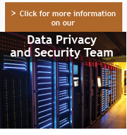 Click for more information on our Data Privacy and Security Team
